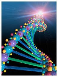 ADN cosmico 2